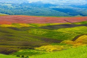 Tuscany colourful agriculture hills Italy