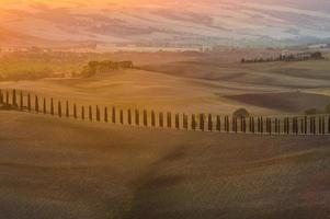 Beautiful colorful fields in Tuscany