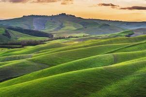 Campos soleados en Toscana, Italia