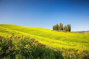 Toscana na primavera