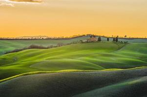 Spring Tuscan fields bathed in warm sunlight