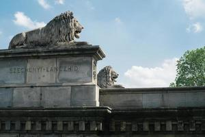 Lion statues on Chain Bridge in Budapest