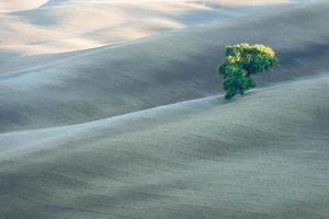 I paesaggi della Val d'Orcia, Toscana, Italia