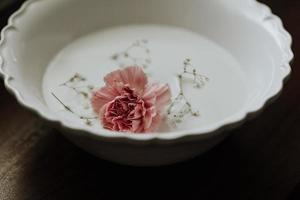 Pink rose in white ceramic bowl