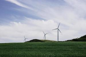 Three windmills in an open green prairie