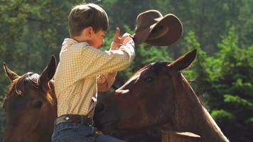 Boy puts hat on horse