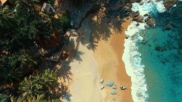 Aerial: Looking down at the beach with a bird's-eye view. video
