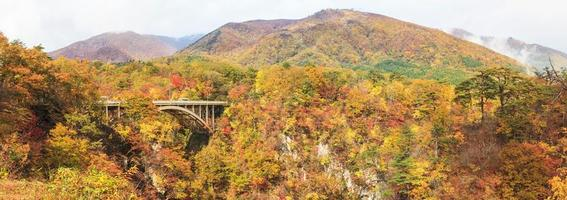 Autumn Colors of Naruko-Gorge in Japan photo