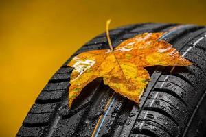 Neumático con hojas de follaje de otoño y lluvia.