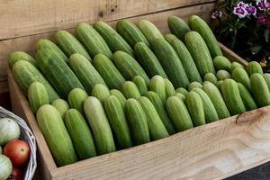 Cucumbers in box photo