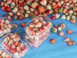 Strawberries in plastic crates