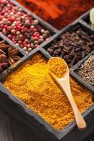 spices black pepper, paprika powder, curry, anise; clove; cumin