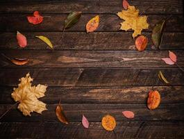 Colorful autumn leaves on a dark old wood background.