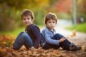 Adorable little boys with autumn leaves in the beauty park
