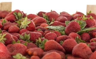crate of strawberries photo