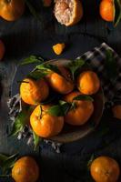 naranjas satsuma orgánicas crudas foto