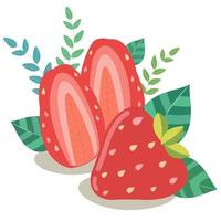 Fresh strawberry halves with green leaves vector