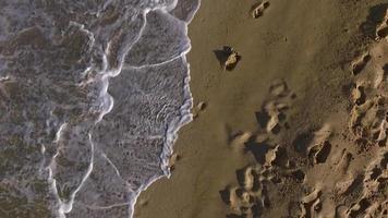 Antenne: menschliche Fußabdrücke im Sand. video