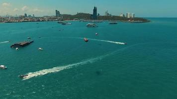Aerial: Skydivers flying over the sea in Pattaya bay. video