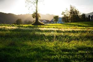 Village Lipica, Slovenia