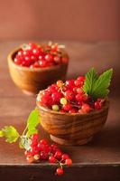 fresh redcurrant in bowls over rustic wooden background photo