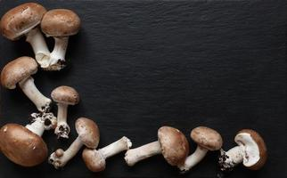 Mushrooms on slate background