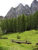 Wooden bench in the Triglav National Park