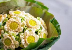 Cerca de ramo de flores de loto blanco