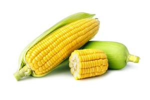 Fresh corn isolated on white background photo