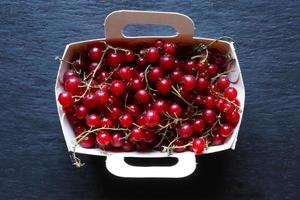 Red currants in a paper tray photo