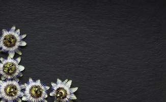 Blue passionflower border on slate background