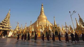 buddhistische Mönche, die in Yangon, Myanmar (Burma) um die Shwedagon-Pagode herumlaufen