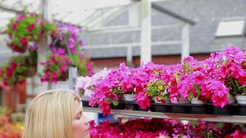 mulher trabalhando na prateleira do centro de flores do jardim