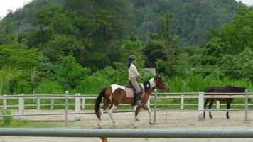 Establo de entrenamiento de caballos en un círculo.