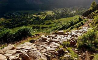 Ben Nevis foot path photo