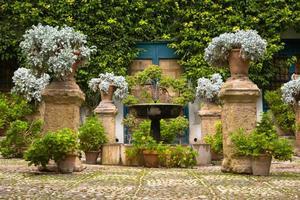Courtyard in Cordoba