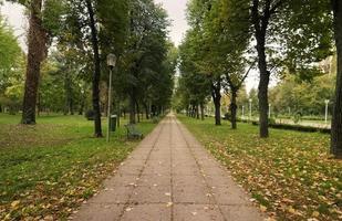 callejón en el parque durante el otoño