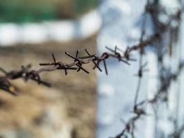 Close-up of a barbed-wire fence