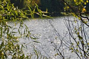 água brilhante do lago