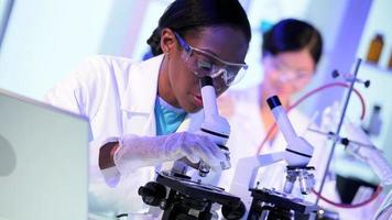 asistentes de investigación que trabajan en el laboratorio del hospital video