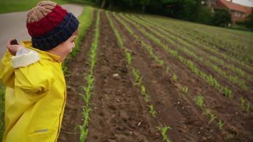 niño tirando piedras en la granja video