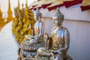 Buddha is arranged photo