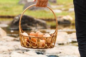 Boiled eggs in hot spring