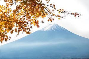 Fujisan photo