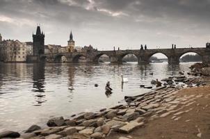 puente de carlos desde el río foto