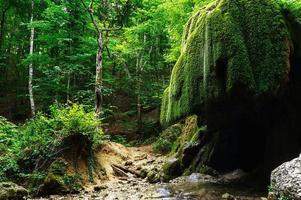 cascada Silver Stream, gran cañón de Crimea foto