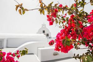 White church and red flowers.
