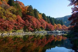 Autumn foliage in Korankei, Aichi, Japan photo