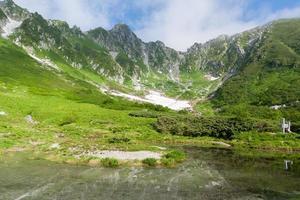 Beautiful Central Alps Senjojiki curl