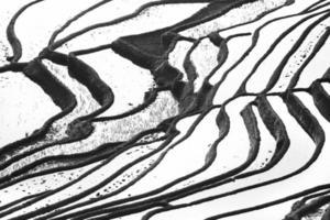 Terraços de arroz yang yuan com imagem em preto e branco